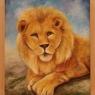 ad-burgmans-leeuw
