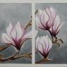 claar-wijnen-magnolias