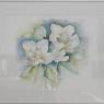 franka-van-de-doelen-bloemen