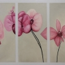 marian-somers-bloemen