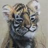 renilde-driessen-tijger