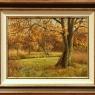 toon-adams-herfst-landschap