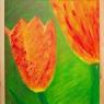 andre-van-leeuwen-tulpen