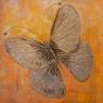 marianne-egtberts-le-papillon