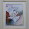 rie-heijligers-buitelaar-witte-rozen