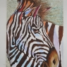 Hanriëtte Boogers-Coppelmans - zebra