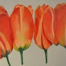 Paula Molier Tulpen acryl